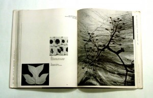 Pages from The New Landscape by György Kepes, 1956