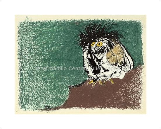 Owl Perspective fine art print