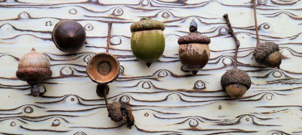 pic Emma Boden bark & rock acorns 19 2_wm
